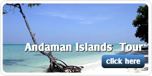 Andaman Islands Tours from Trichy